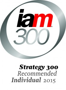 Strategy 300_Individual 2015