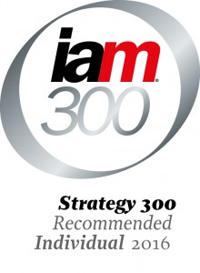 IAM Strategy 300 2016